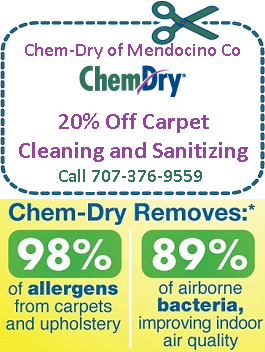Allaire chem dry coupons